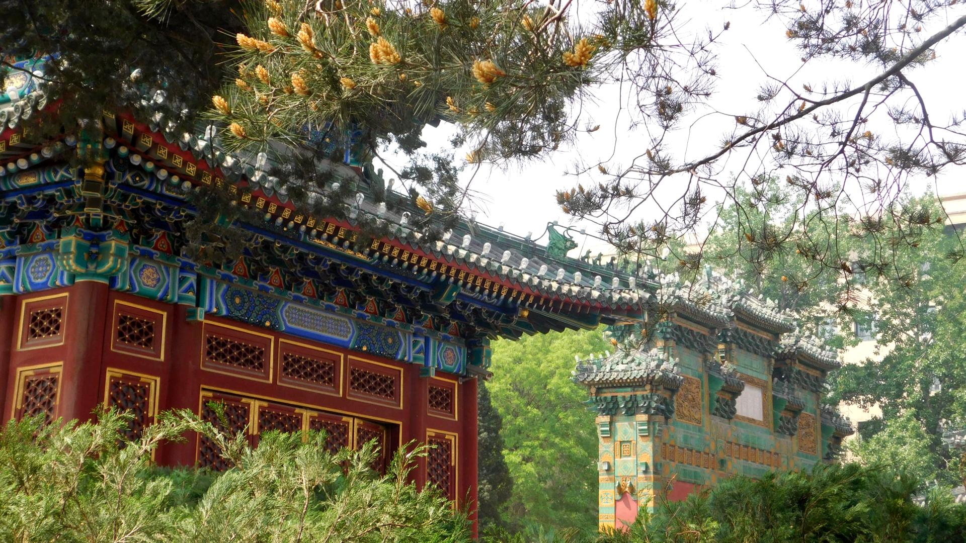 Der Beihai Park ist durchspickt von schönen Bauten und Pflanzen.